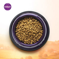 Halo Small Breed Holistic Chicken & Chicken Liver Recipe Dry Dog Food