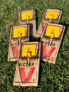 5 pack of Victor Professional rat traps (incl. shipping)
