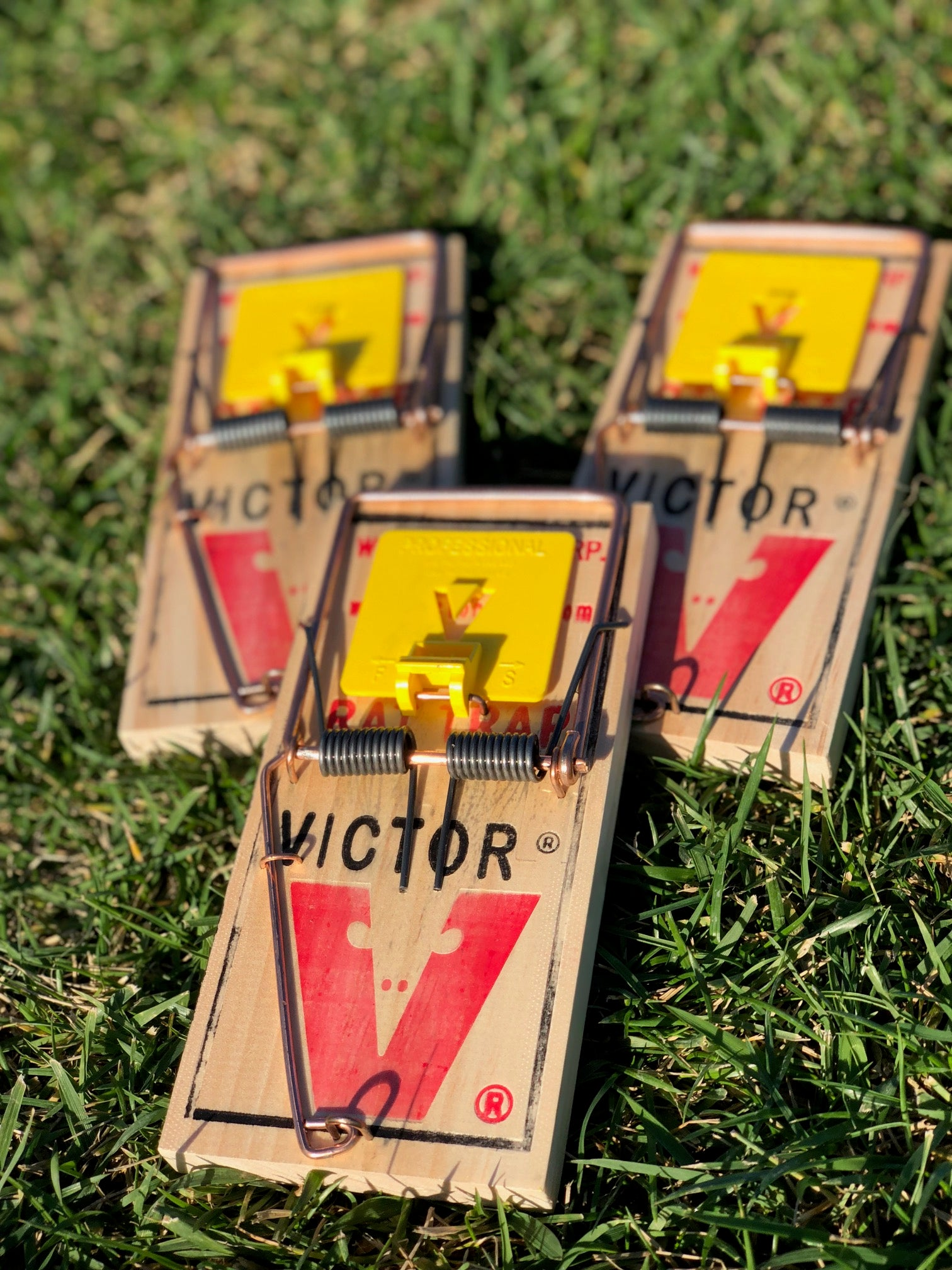 3 pack of Victor Professional rat traps (incl. shipping)