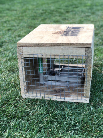 DOC 250 trap for ferrets, stoats, rats and hedgehogs (incl. shipping)