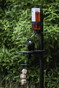 PekaPeka Bird Feeder Kit (incl. shipping)