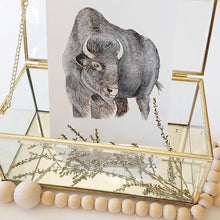 Bison fine art print, photographed with natural elements. Animal art, woodland animal painting.