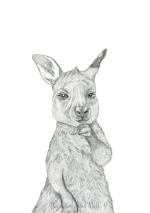Kangaroo Joey Drawing