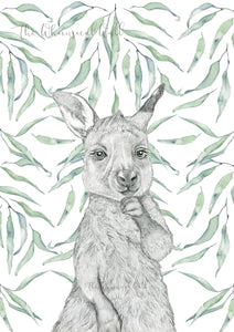 Kangaroo Joey with with gum leaves