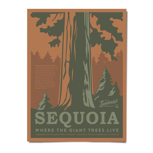 Poster - Sequoia