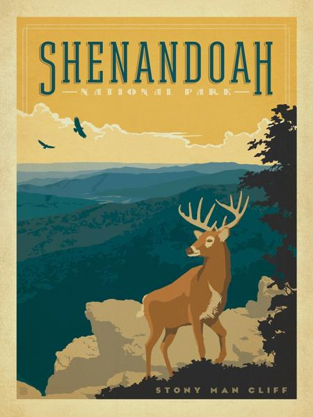 COMING SOON! National Park Puzzle - Shenandoah