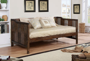 PETUNIA DAYBED  /  CM1767