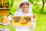 Beehives and bee health