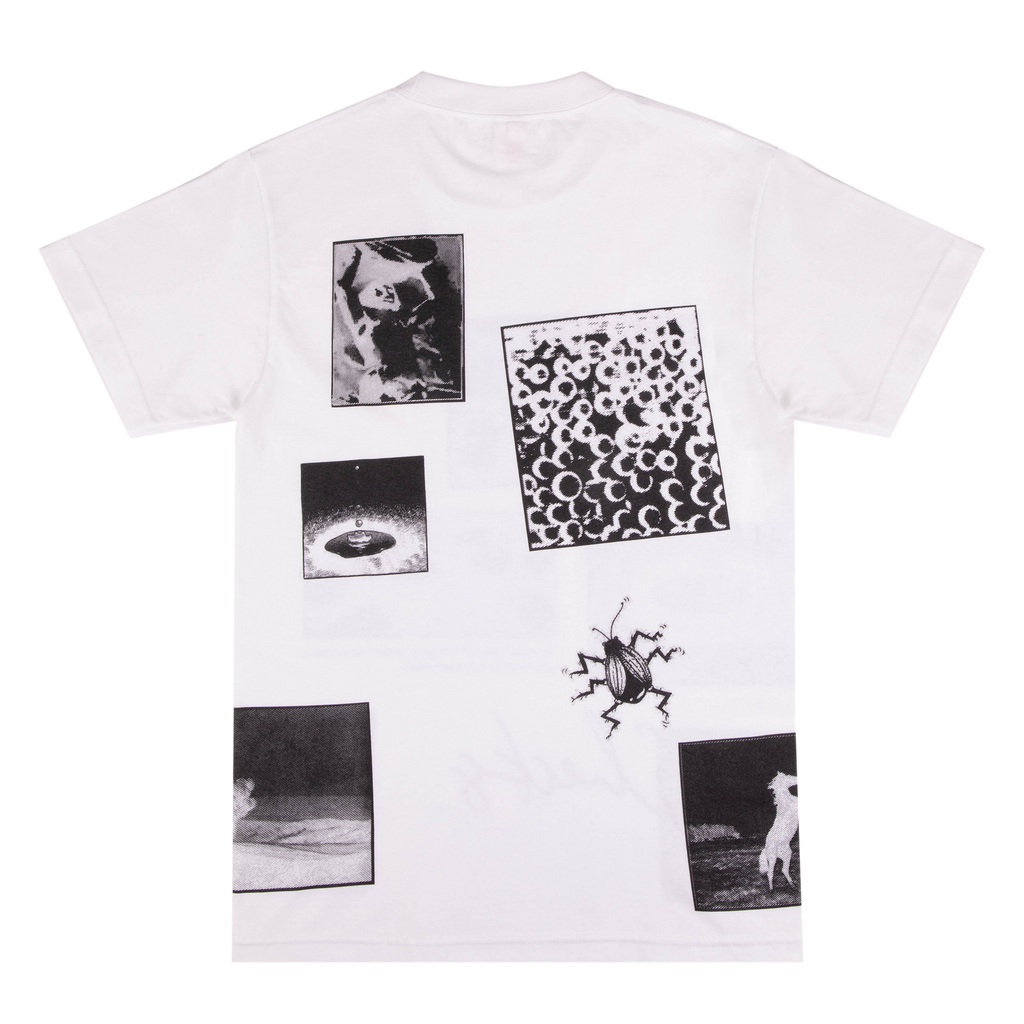 Checks Beetle T-shirt White | CHECKS DOWNTOWN