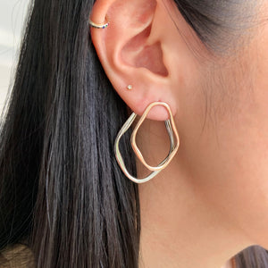 Dual 2 Way Earrings