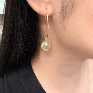 Long Back Single Stone Earrings