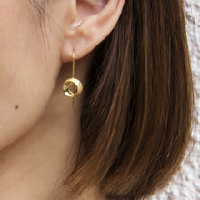 Thru' the Loop Earrings