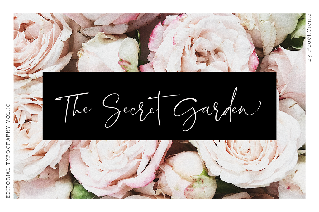 Blush Society Font , , - peachcreme.com