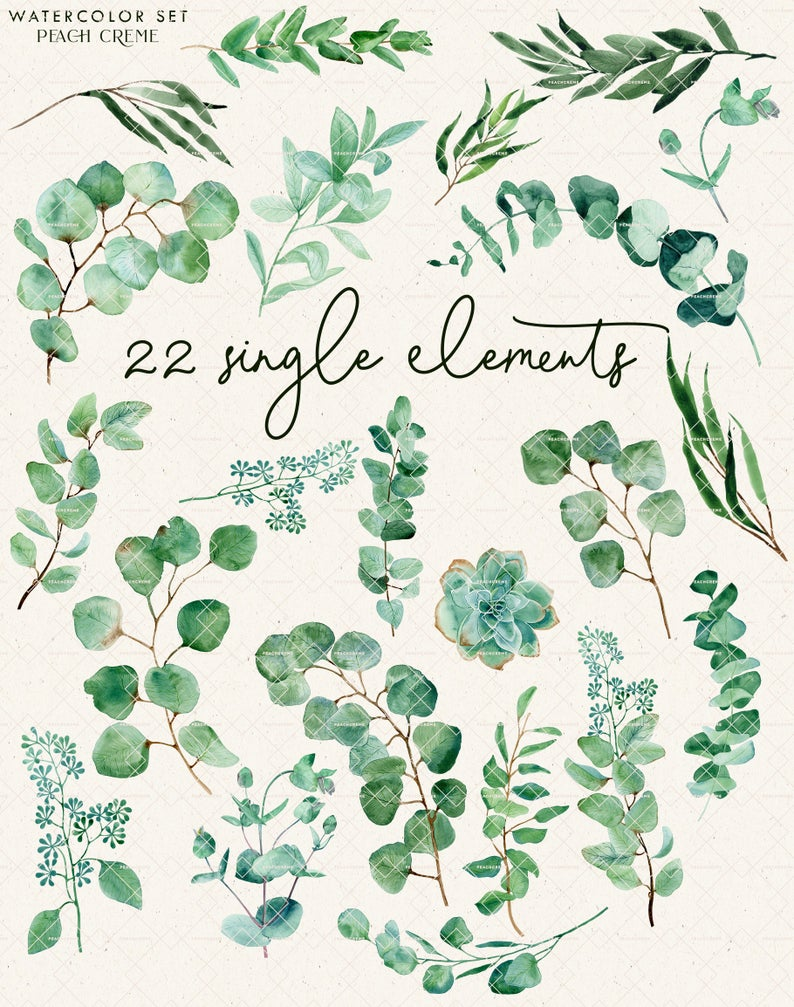 Lovely Eucalyptus // Watercolor Set