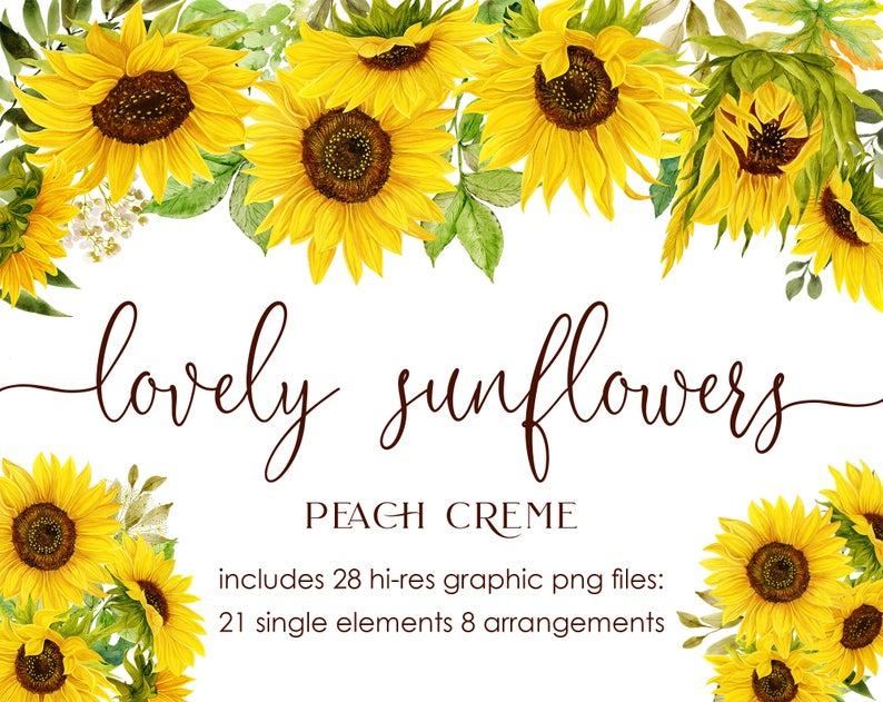 Lovely Sunflowers // Watercolor Set