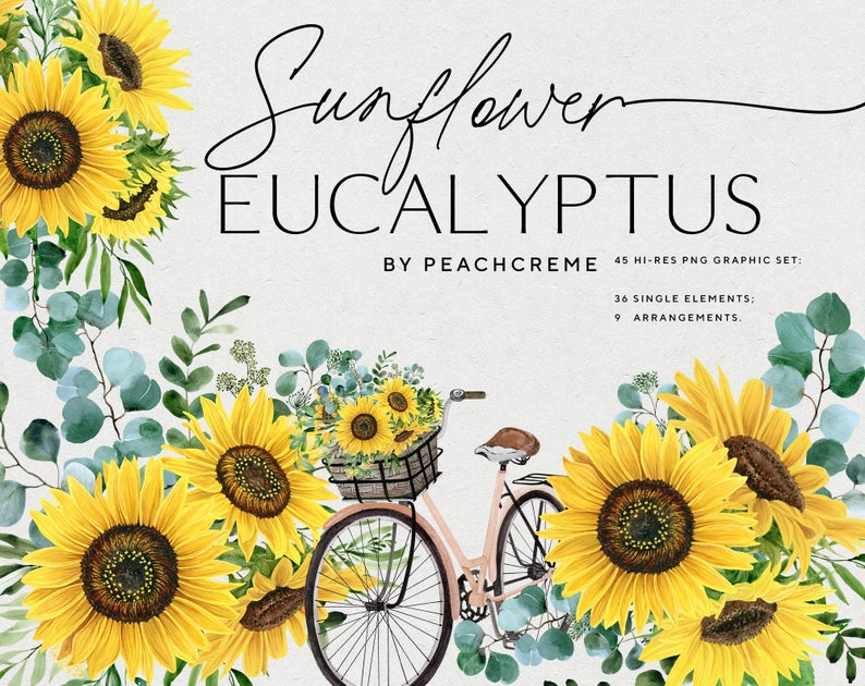 Sunflower Eucalyptus // Watercolor Set