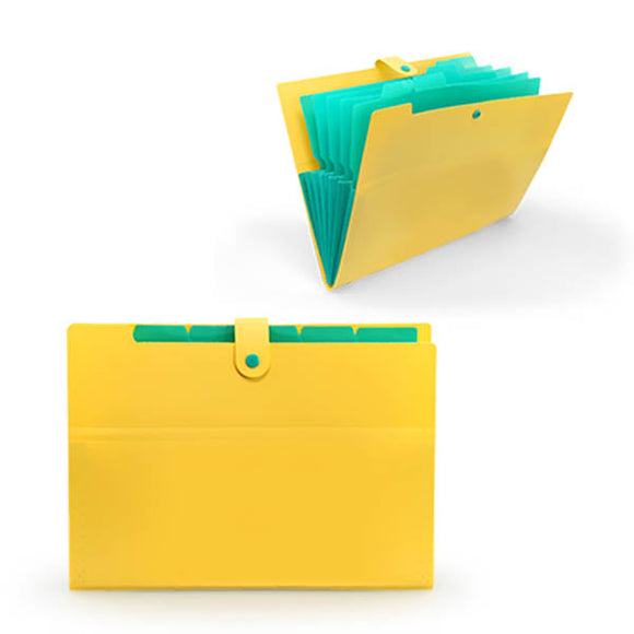 Accordion Style PP Folder