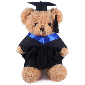 Furry Graduation Teddy Bear