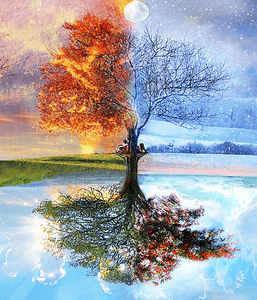 Four Seasons Tree Landscape DIY Painting Kit. - paint by numbers