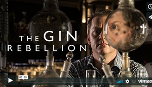 Southern Wild's distiller George Burgess - The Gin Rebellion