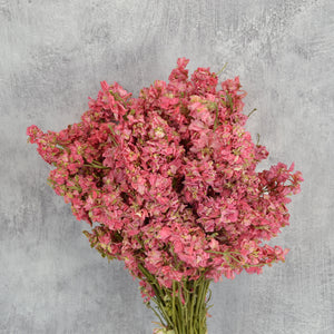 Create Your Own Dried Flower Bouquets and Arrangements - Dark Pink