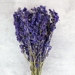 Cadbury Purple Delphinium Bunch