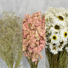Create Your Own Dried Flower Bouquets and Arrangements - Light Pink