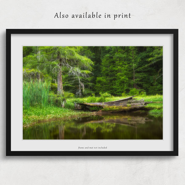Alligator Lake Canvas