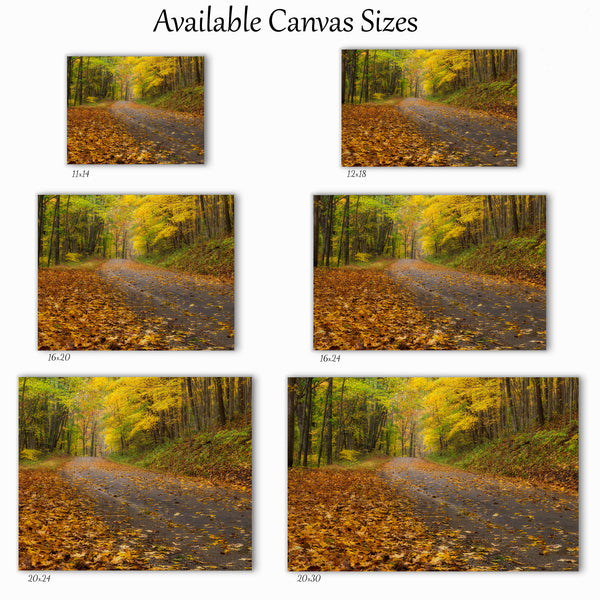 Autumn Road Canvas
