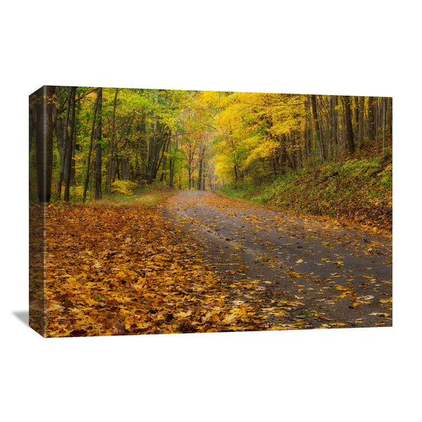 autumn road in the hocking hills forest of ohio on a canvas print