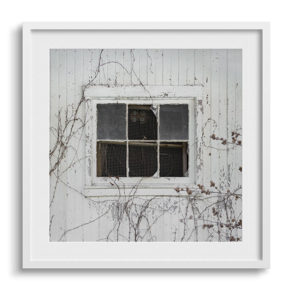barn window phtoography wall art