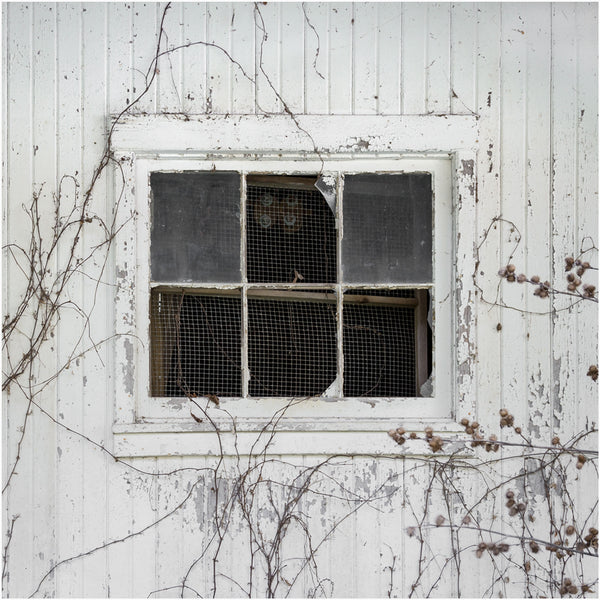 white barn window photography