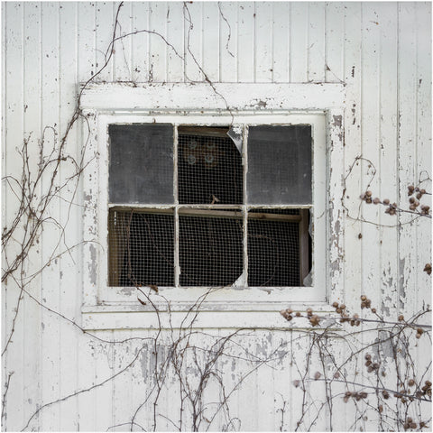 white barn window