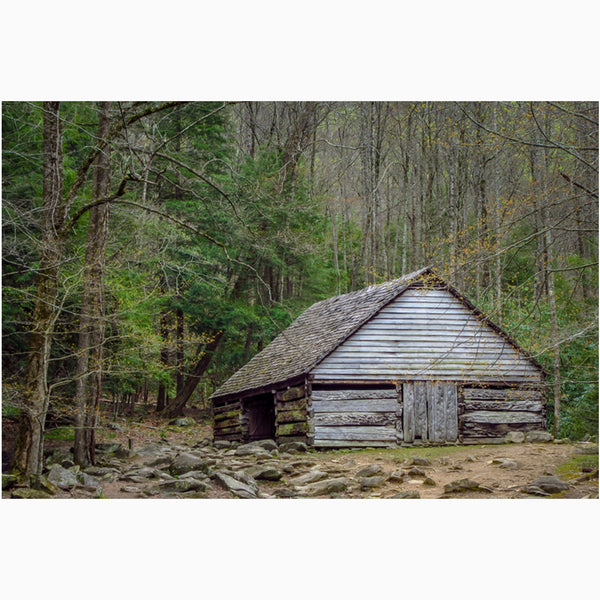 photography print of bud ogle barn in the smoky mountains