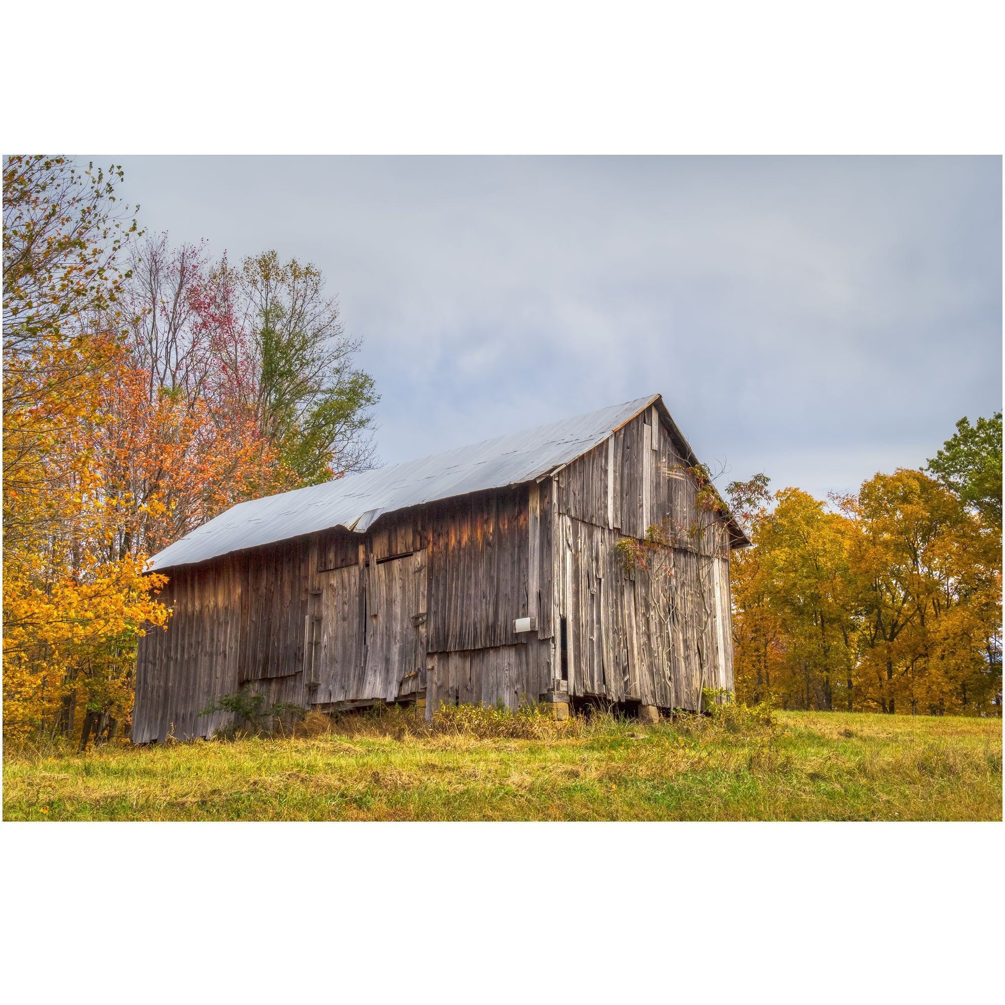 ohio barn in the fall wall art