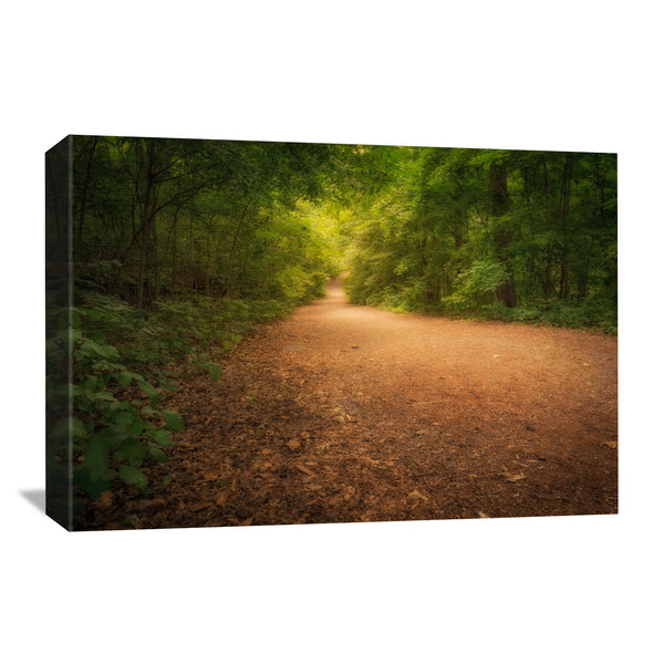 canvas art print of dunbar cave state park in tennessee