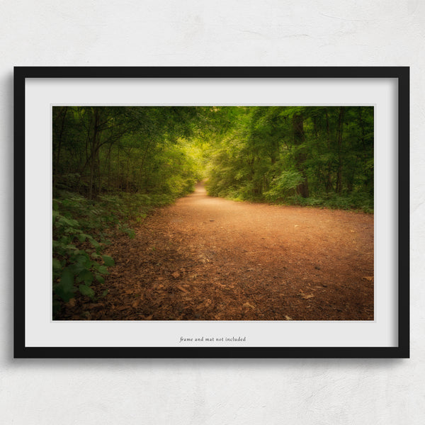 nature photography wall art of dunbar cave trail