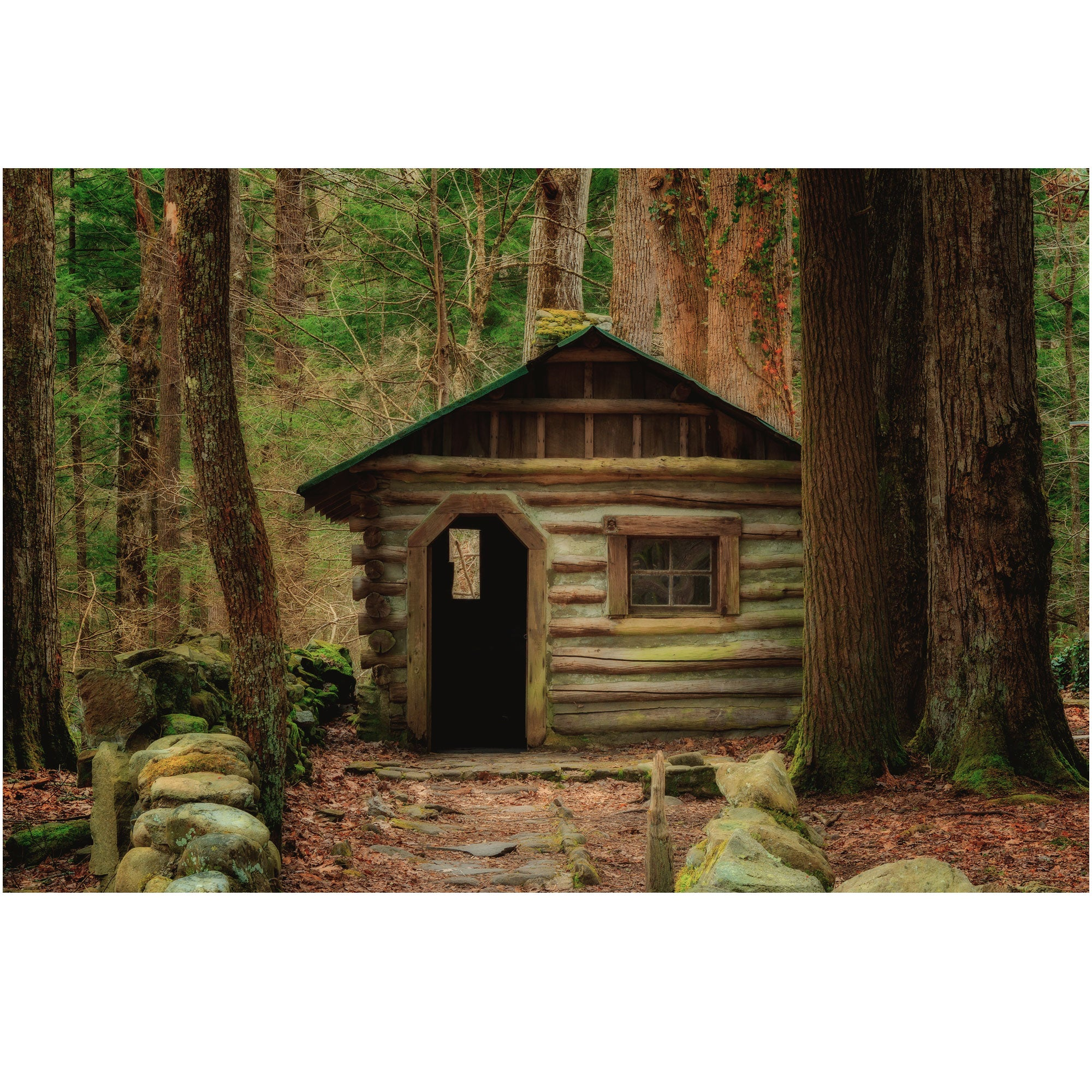little log cabin at elkmont in the smoky mountains national park