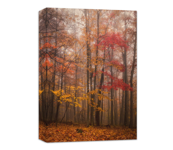 fall in new river gorge canvas wall art