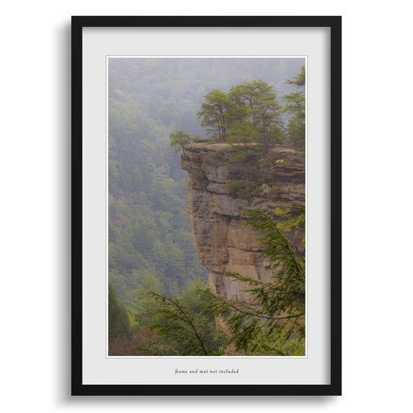 Fog in the Gorge at Red River Gorge Kentucky Wall Art