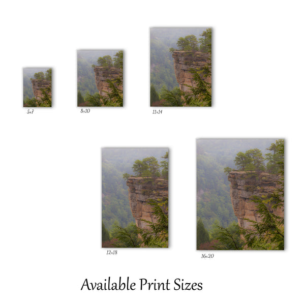 Fog In The Gorge Print