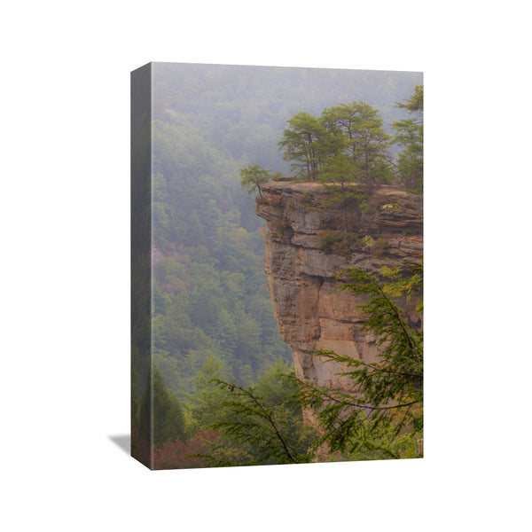 red river gorge photography wall art canvas