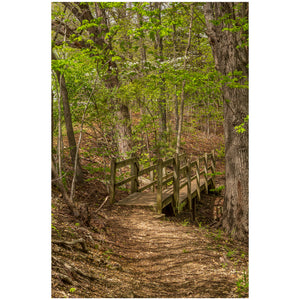 ha ha tonka state park in missouri photo of a trail