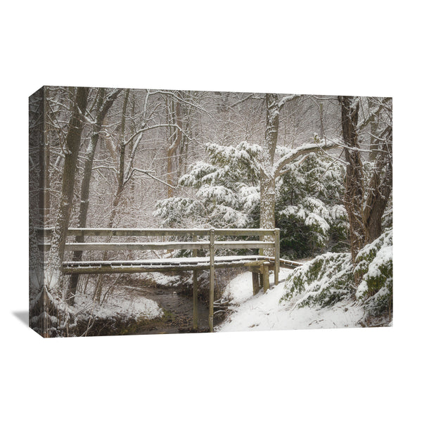 canvas wall art winter photography