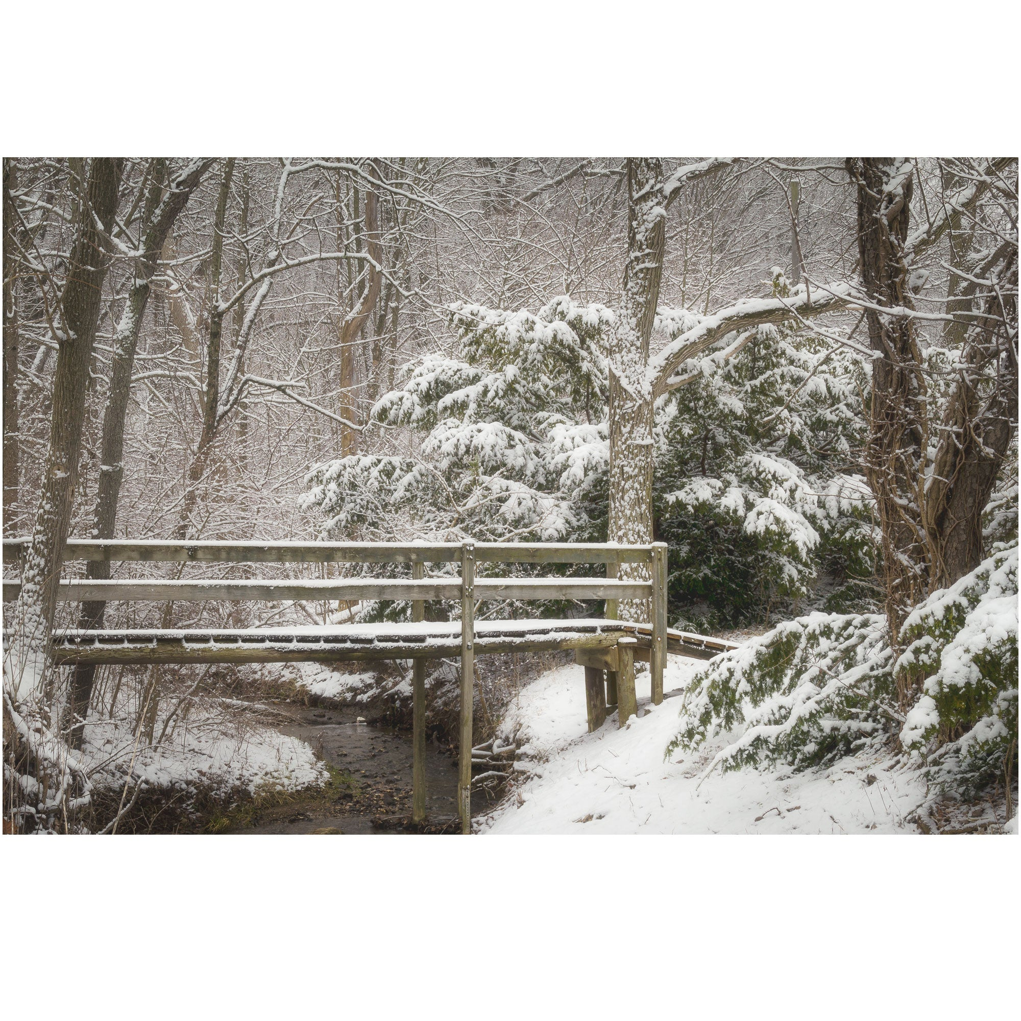 winter scene of a bridge at kiser lake in ohio