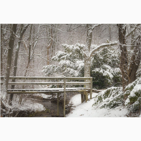 winter scene of Kiser Lake footbridge nature photography print