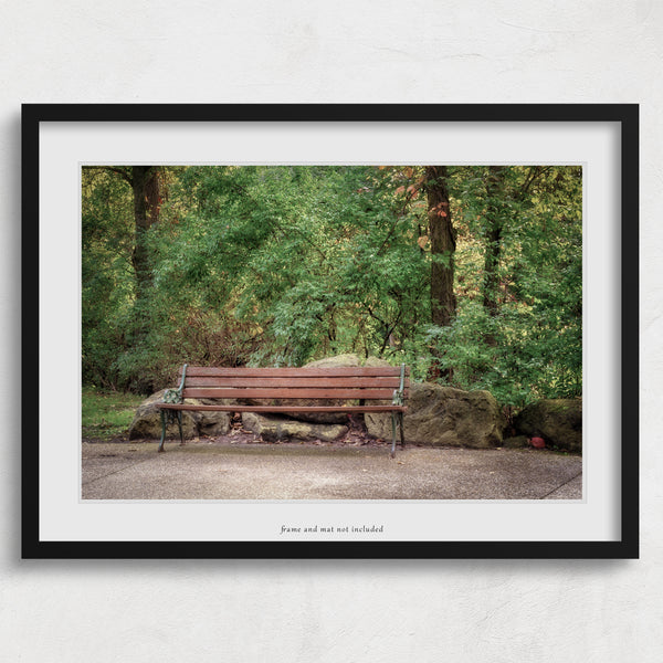 park bench photography wall art