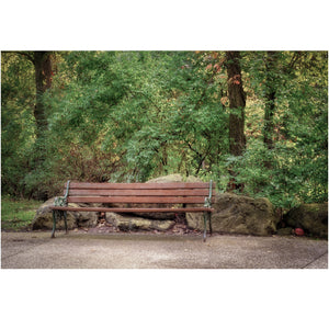 Park Bench Canvas