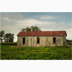 abandoned sharecropper shack on a mississippi plantation photography