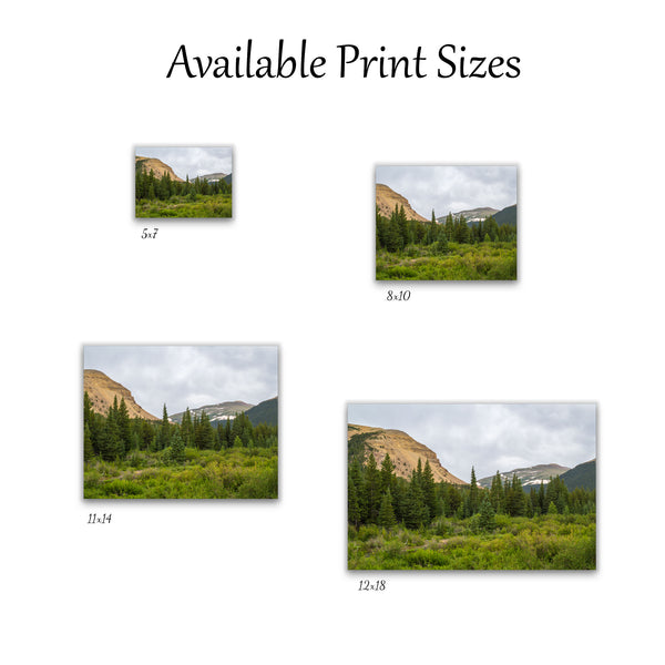 Sheep Mountain Print